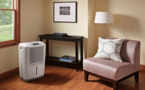 30 pint dehumidifier featured image