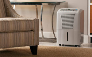 50 Pint Dehumidifier Featured Image
