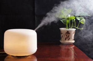 Humidifier with Diffusion