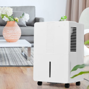 What Is a 50 Pint Dehumidifier