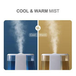 cool and warm mist humidifier