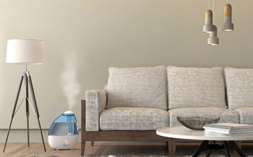 cool mist humidifier featured image