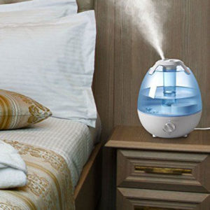 cool mist humidifier reviews