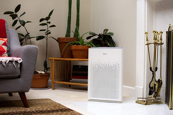 Best Winix Air Purifier