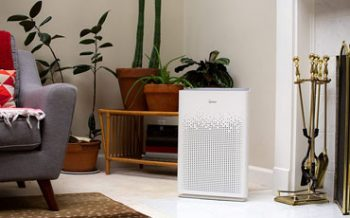 Winix Air Purifiers